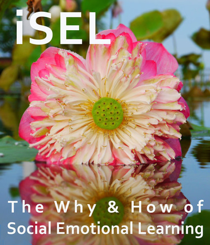 Project: iSEL EQ for Teachers (July-Aug 2014) | EQ.org | Emotional Intelligence and Social Emotional Learning | Scoop.it