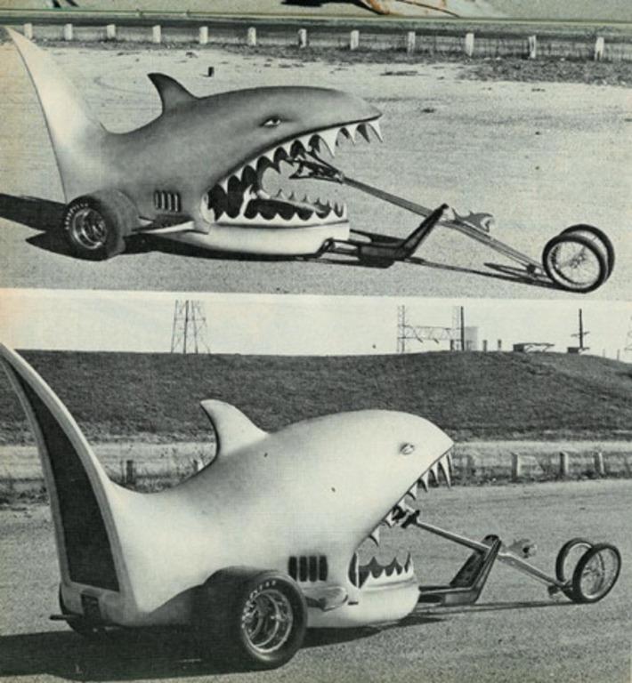 Land Shark | Kitsch | Scoop.it