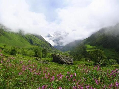 booking Uttaranchal Tour Package | Summer Vacation Deals For USA | Scoop.it