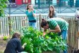 Jardin permacole, le raccordement à la terre | Rennes la Novosphère | ESS et innovation sociale en Bretagne et ailleurs | Scoop.it