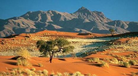 Mad Max a détruit le plus vieux désert du monde | Les déserts dans le monde | Scoop.it
