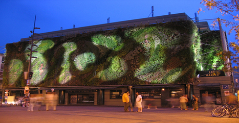 Schermi verdi come brise soleil viventi per le facciate degli edifici | Facciate, facades, vertical green wall, colorful facades, wall street art, facades led media light, projection  mapping | Scoop.it