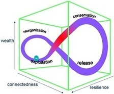 How Strange Attractors, Panarchy and Rhizome Can Be Used To ... | Rhizomatic Learning | Scoop.it