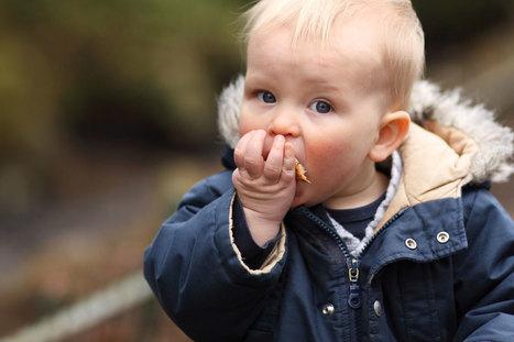 ¿Cuáles son los beneficios del pan para los niños? - Escuelas Infantiles Velilla | yolandasp | Scoop.it