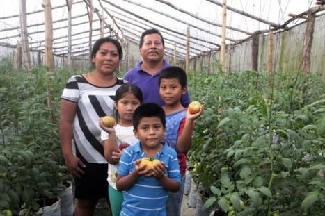 Vegetable Gardens Ease Poverty in El Salvador - Inter Press Service | Global Politics - Poverty | Scoop.it