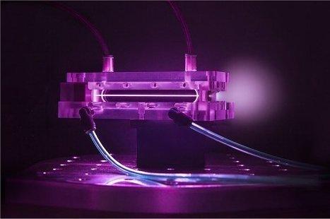 Mini-LHC de 9 cm bate recorde mundial de energia | tecnologia s sustentabilidade | Scoop.it