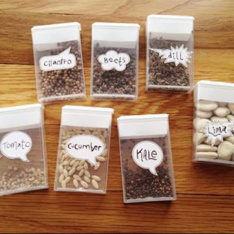 Store your seeds in empty tic tac boxs | World In Green | Scoop.it