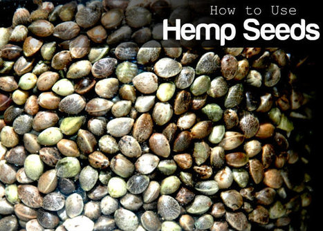 How to Use Hemp Seeds   At Home Health and Beauty Tips   Scoop.it