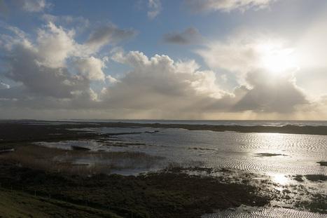 Bretagne - Finistère :  la palud inondée, la dune, la mer... (3 photos) | photo en Bretagne - Finistère | Scoop.it