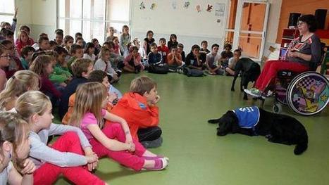 Les écoliers de Saint-Jean remettent 300 € à Handi'chiens | CaniCatNews-actualité | Scoop.it