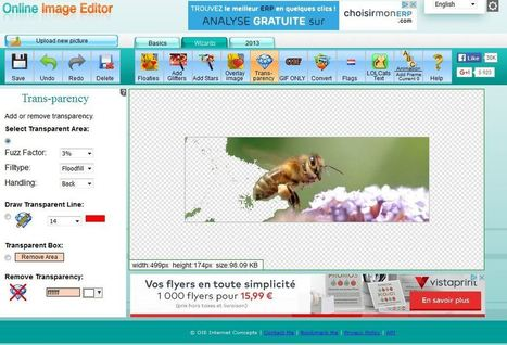 Rendre le fond transparent pour une image (en ligne) | Ressources Ecole | Scoop.it