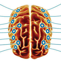 Signal for Consciousness in Brain Marked by Neural Dialogue   Consciousness   Scoop.it