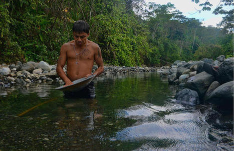 #EndangeredProtectors: #Turtle conservationist's death highlights perils of protecting #CostaRica's environmental wealth ~ | Rescue our Ocean's & it's species from Man's Pollution! | Scoop.it