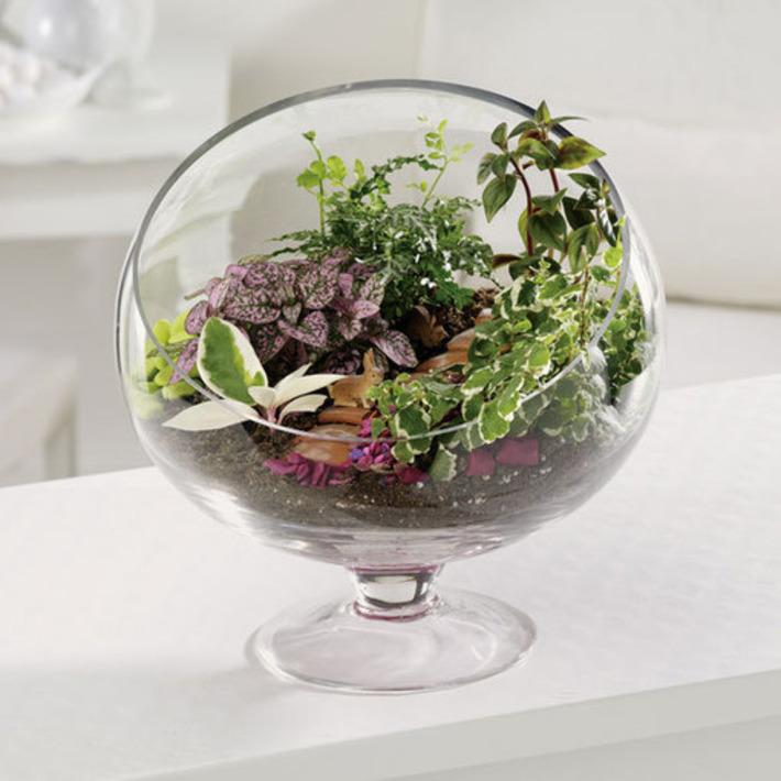 Creating a Garden with Ease with Terrarium Garden Idea | Home Garden Air | Container Gardening | Scoop.it