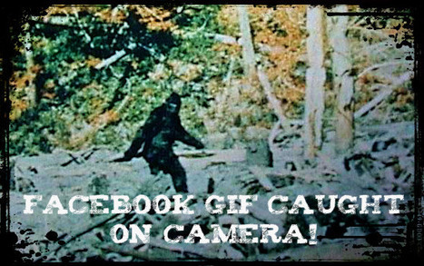 Facebook Gif Conspiracy Theory Caught on Camera. Proof inside! | Social Media News | Scoop.it