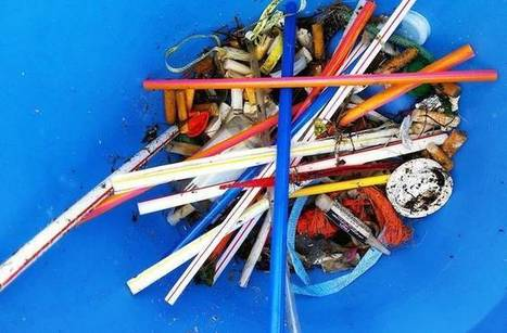How to banish plastic straws from your life forever   Plastic Pollution   Scoop.it