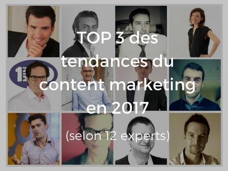 12 experts partagent le Top 3 des tendances du content marketing en 2017 | Communication WEB - Réseaux Sociaux - Veille - Content Marketing - SEO | Scoop.it