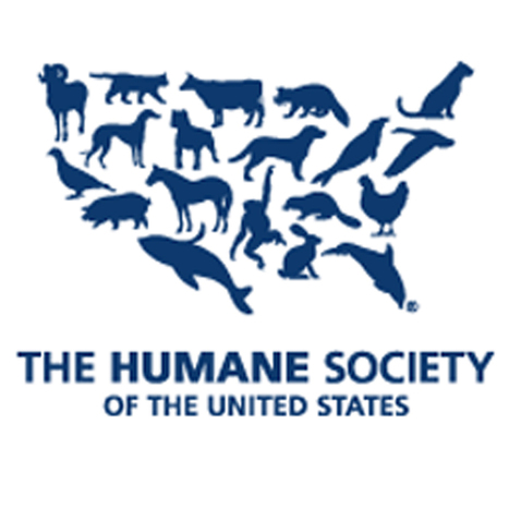 Poaching : The Humane Society of the United States | G.T. Tech Challenge | Scoop.it