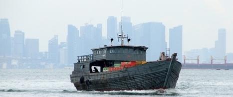 Kelautan Indonesia Perlu Regulasi | Marine Conservation (Konservasi Laut) | Scoop.it