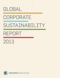 Global Sustainability Report 2013: un análisis del estado de la ...   Green Jobs. Green Skills   Scoop.it