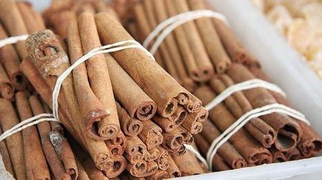 Cinnamon Warning: 5 Other Dangerous Food Challenges | Delicious foods you thought were dangerous | Scoop.it