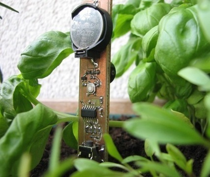 Chirp: An open source plant watering alarm using Attiny44A :Embedded Lab | Arduino, Netduino, Rasperry Pi! | Scoop.it