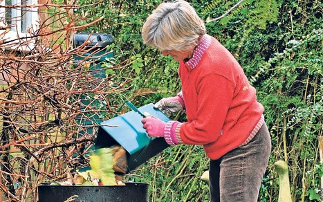 Thorny problems: Can I have a compost heap on my balcony? - Telegraph | Container Gardening | Scoop.it