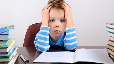 The homework that inspires horror in families | Leading Schools | Scoop.it