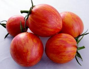Pink Bumble Bee Cherry Tomato - Artisan Seeds | Local Food Systems | Scoop.it