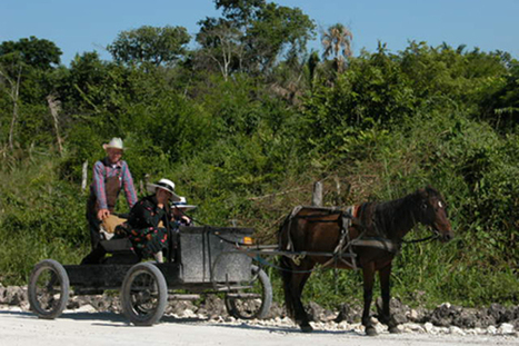 The Mennonite Communities of Belize Culture | Belize in Social Media | Scoop.it
