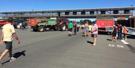 Eleveurs en colère : barrages filtrants et péages gratuits sur l'A89 en Dordogne   Agriculture en Dordogne   Scoop.it