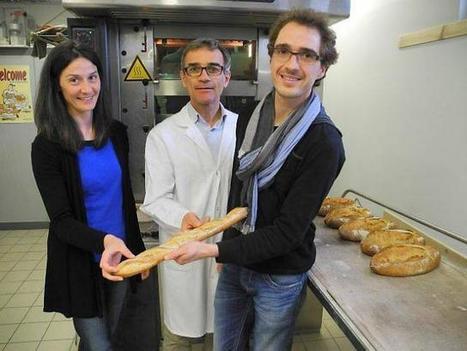 Du bon pain avec plus de fibres et moins de sel...   Ouest France Entreprises   Veille technologique   Scoop.it