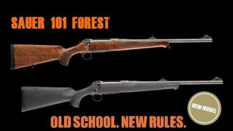 Sauer 101 Forest, bolt-action rifle - Hunting - all4shooters.com | all4shooters EN | Scoop.it