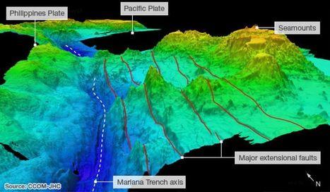 Una 'rave' en el fondo del océano | Planeta Tierra | Scoop.it