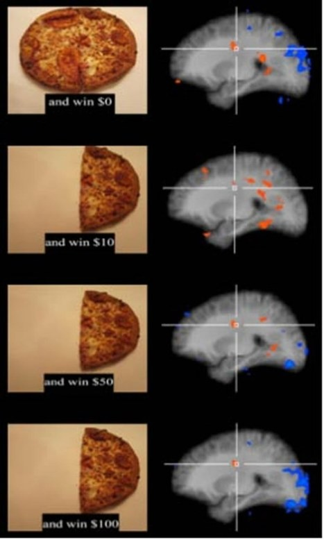 Eat Less and Be Happy | Social Neuroscience Advances | Scoop.it