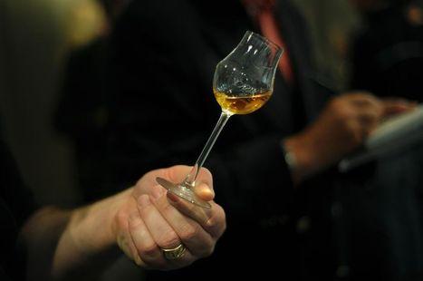 Un risque de mortalité accru dès un verre de vin par jour   CicerOOs_Scooped   Scoop.it