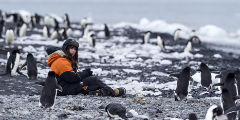 On The Front Lines Of Climate Change, Antarctica's Scientists And Penguins Fight For World's Attention (PHOTOS) | Amocean OceanScoops | Scoop.it