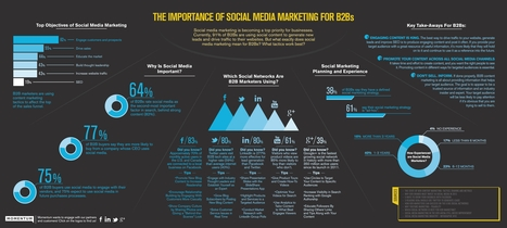 Importance of Social Media Marketing for B2Bs | Momentum | Social Media Marketing | Scoop.it