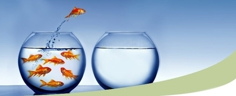 Free Team Building Activities ...» Talented HR Blog | Talented HR Blog | L&D | Scoop.it