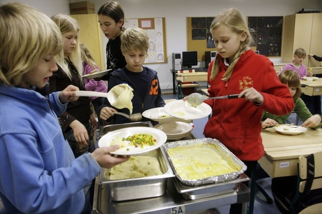 England replicates Finland's school lunch system | #finnedchat | Scoop.it
