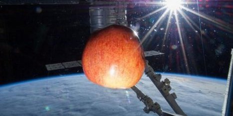 NASA Tweets As Fresh Fruit Arrives On International Space Station - Huffington Post UK   fromitalyweb   Scoop.it