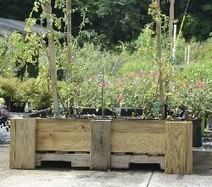 Pallet planting: Pinterest idea gains ground with gardeners in greater Chattanooga area | Aquaponics~Aquaculture~Fish~Food | Scoop.it