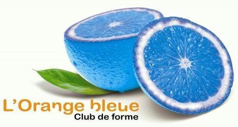 L'Orange Bleue va ouvrir sa première unité belge | Actualité de la Franchise | Scoop.it