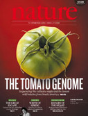 Nature: The tomato genome sequence provides insights into fleshy fruit evolution | Wageningen Seed Lab | Scoop.it