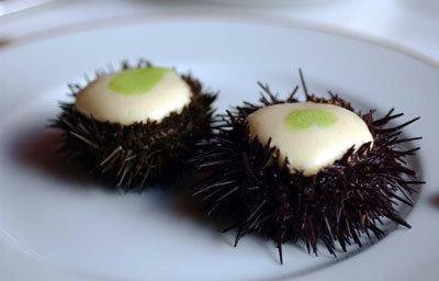Île aux Moines sea urchins in a saffron flavoured nasturtium velouté - Alain Passard - Entre Chefs | @FoodMeditations Time | Scoop.it