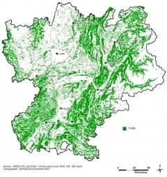 La filière bois pourrait doubler sa production: l'or vert de Rhône-Alpes  sous-exploité | Lyon Business | Scoop.it
