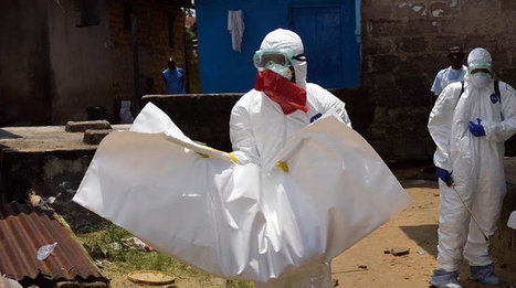FrontPageAfrica - Fears of Deadly Ebola Virus Reportedly Resurface in Liberia | Virology News | Scoop.it