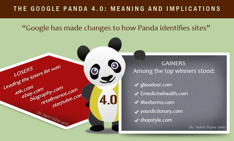 The Google Panda 4.0: Meaning and Implications | Buying, Selling and Working on the Internet | Scoop.it