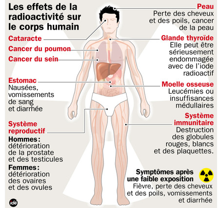 Ruminances: Fukushima, un Drôle de bébé ! | CRAKKS | Scoop.it
