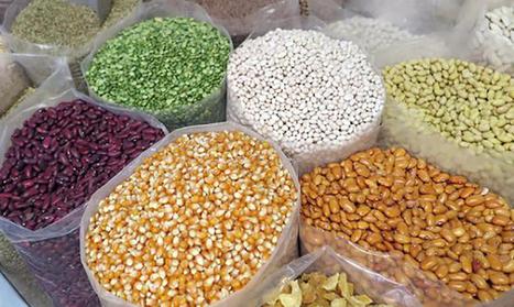 Graines de Troc : des semences à partager | Innovation sociale | Scoop.it
